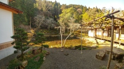 the pond behind Eikokujiyureidera. This temple is known for the lady ghost that appeared out of this pond.