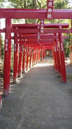 entering Aoiaso Shrine in Hitoyoshi, a designated Japanese National Treasure